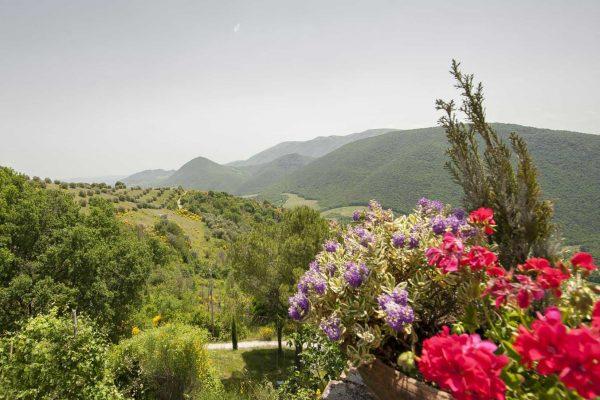 5-s574-beautiful-hills