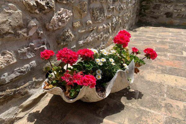 6-s574-flowers