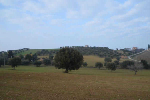 DSC_0674 - Zicht op Romeinse Villa 1