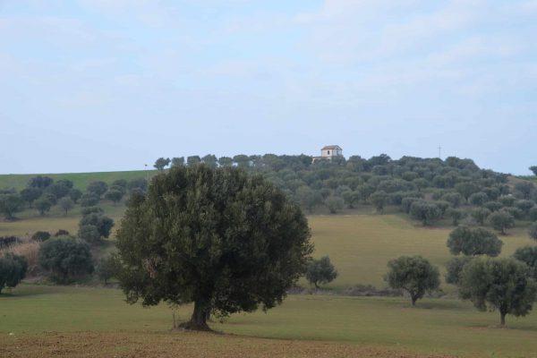 DSC_0675 - Zicht op Romeinse Villa 2
